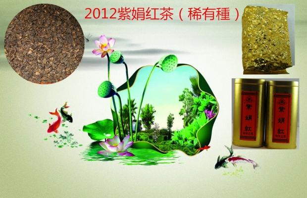 2012紫娟红茶(稀有種)